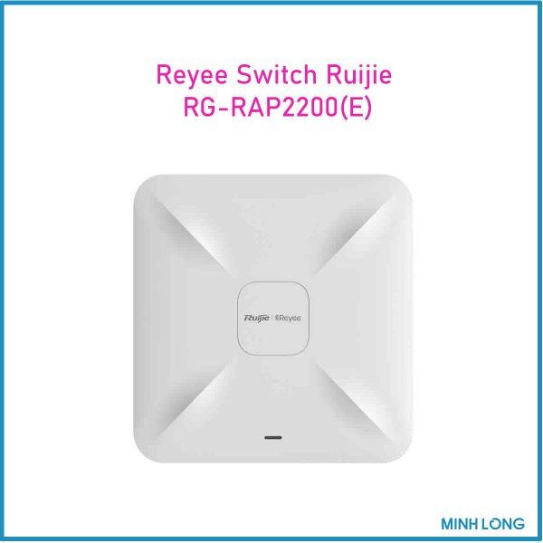 RG RAP2200E 1 3